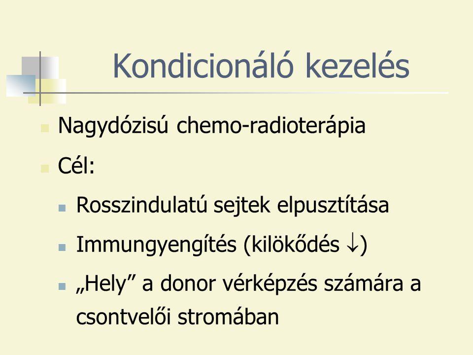"""Kondicionáló kezelés Nagydózisú chemo-radioterápia Cél: Rosszindulatú sejtek elpusztítása Immungyengítés (kilökődés  ) """"Hely a donor vérképzés számára a csontvelői stromában"""