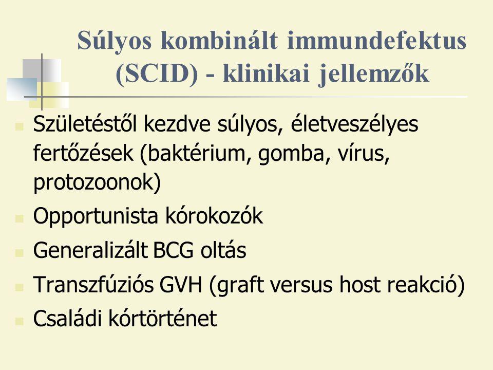 Súlyos kombinált immundefektus (SCID) - klinikai jellemzők Születéstől kezdve súlyos, életveszélyes fertőzések (baktérium, gomba, vírus, protozoonok) Opportunista kórokozók Generalizált BCG oltás Transzfúziós GVH (graft versus host reakció) Családi kórtörténet