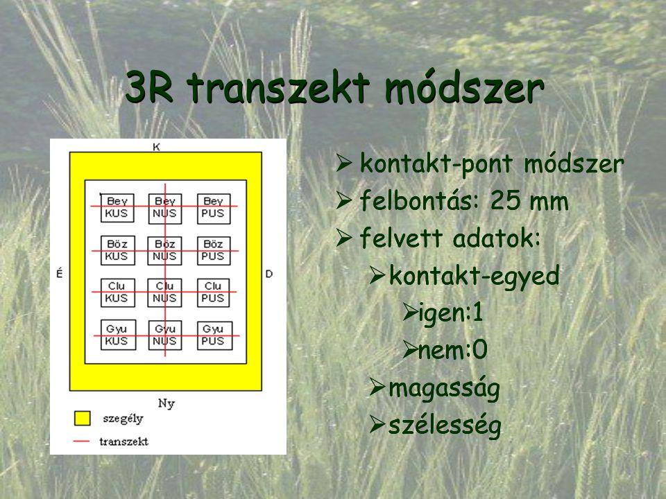 3R transzekt módszer  kontakt-pont módszer  felbontás: 25 mm  felvett adatok:  kontakt-egyed  igen:1  nem:0  magasság  szélesség  kontakt-pon