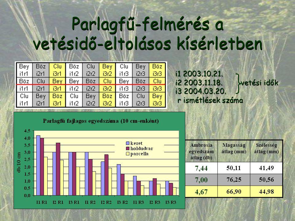 Parlagfű-felmérés a vetésidő-eltolásos kísérletben i1 2003.10.21. i2 2003.11.18. vetési idők i3 2004.03.20. r ismétlések száma i1 2003.10.21. i2 2003.