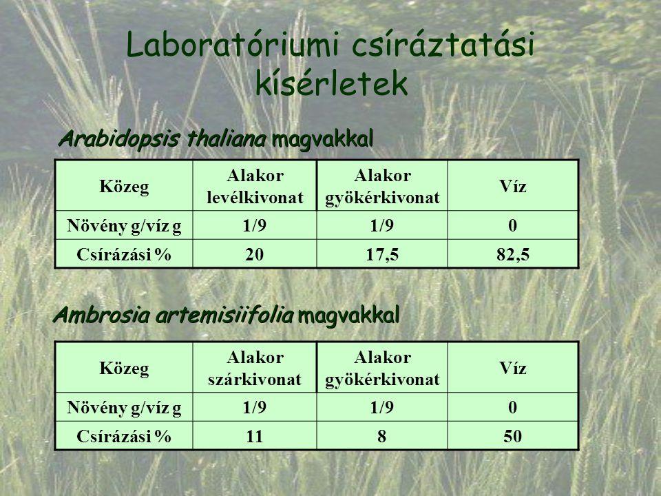 Laboratóriumi csíráztatási kísérletek Arabidopsis thaliana magvakkal Közeg Alakor levélkivonat Alakor gyökérkivonat Víz Növény g/víz g1/9 0 Csírázási