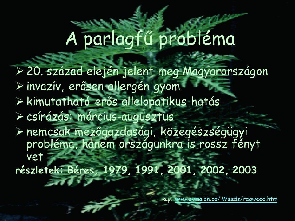 A parlagfű probléma  20. század elején jelent meg Magyarországon  invazív, erősen allergén gyom  kimutatható erős allelopatikus hatás  csírázás: m