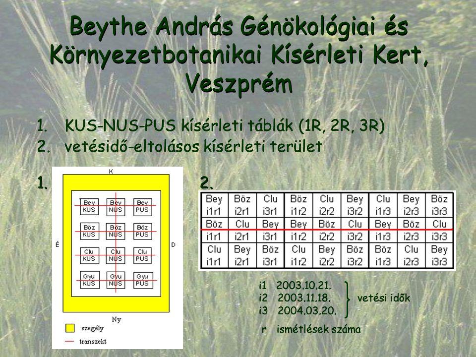 Beythe András Génökológiai és Környezetbotanikai Kísérleti Kert, Veszprém 1.KUS-NUS-PUS kísérleti táblák (1R, 2R, 3R) 2.vetésidő-eltolásos kísérleti t