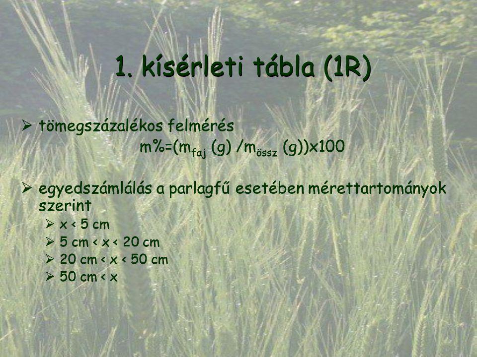 Laboratóriumi csíráztatási kísérletek Arabidopsis thaliana magvakkal Közeg Alakor levélkivonat Alakor gyökérkivonat Víz Növény g/víz g1/9 0 Csírázási %2017,582,5 Közeg Alakor szárkivonat Alakor gyökérkivonat Víz Növény g/víz g1/9 0 Csírázási %11850 Ambrosia artemisiifolia magvakkal