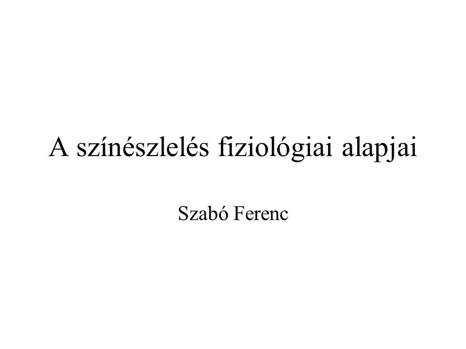 A színészlelés fiziológiai alapjai Szabó Ferenc