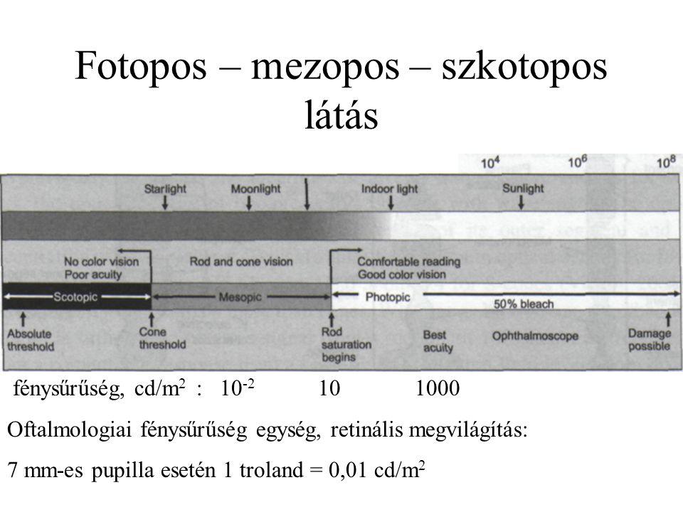Fotopos – mezopos – szkotopos látás fénysűrűség, cd/m 2 : 10 -2 10 1000 Oftalmologiai fénysűrűség egység, retinális megvilágítás: 7 mm-es pupilla eset