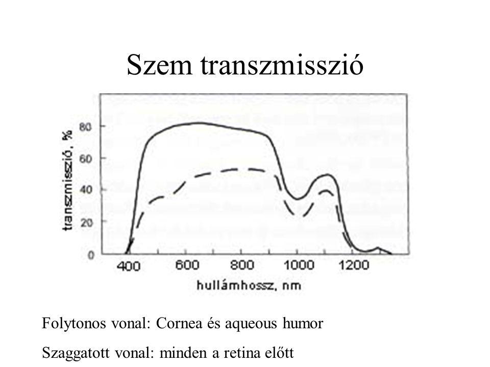 Szem transzmisszió Folytonos vonal: Cornea és aqueous humor Szaggatott vonal: minden a retina előtt