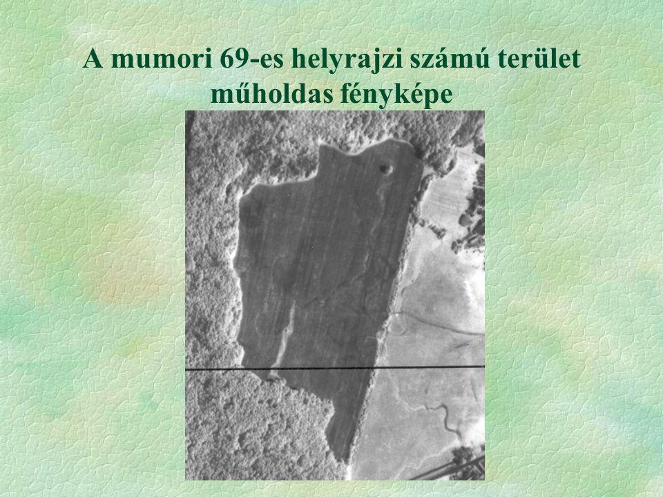 A mumori 69-es helyrajzi számú terület műholdas fényképe