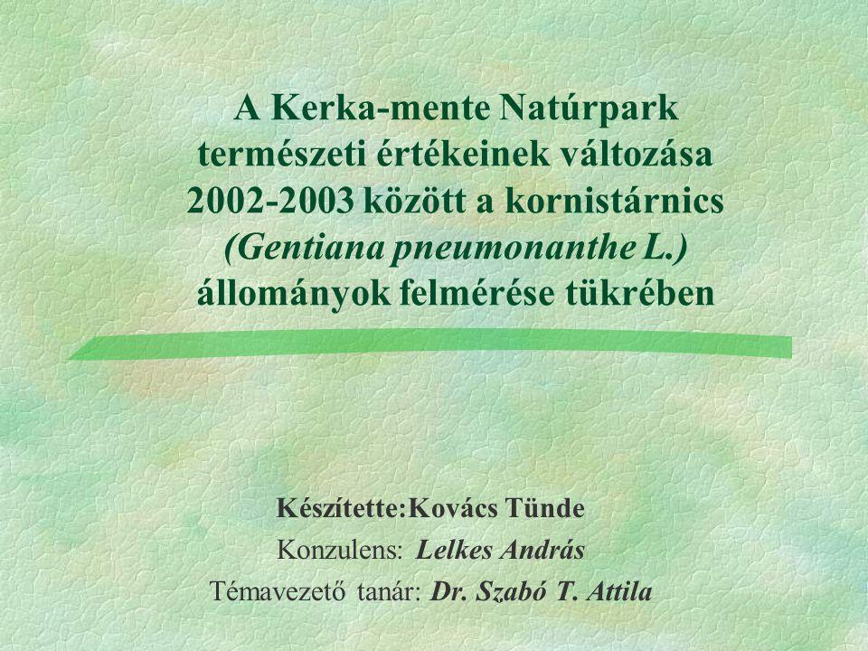 A Kerka-mente Natúrpark természeti értékeinek változása 2002-2003 között a kornistárnics (Gentiana pneumonanthe L.) állományok felmérése tükrében Készítette:Kovács Tünde Konzulens: Lelkes András Témavezető tanár: Dr.