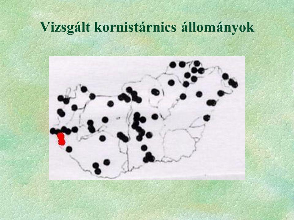 Vizsgált kornistárnics állományok