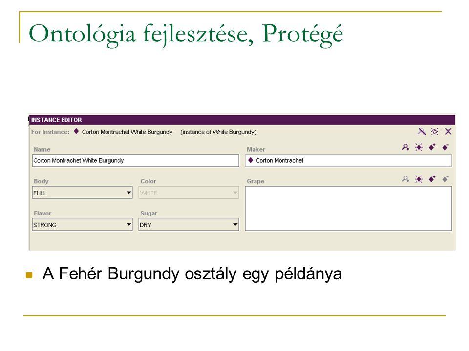 Ontológia fejlesztése, Protégé A Fehér Burgundy osztály egy példánya