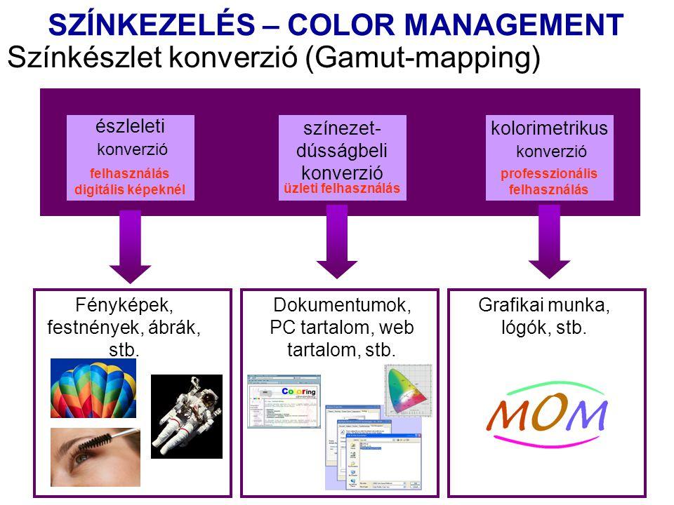 Színkészlet konverzió (Gamut-mapping) észleleti konverzió színezet- dússágbeli konverzió kolorimetrikus konverzió felhasználás digitális képeknél üzleti felhasználás professzionális felhasználás Fényképek, festnények, ábrák, stb.