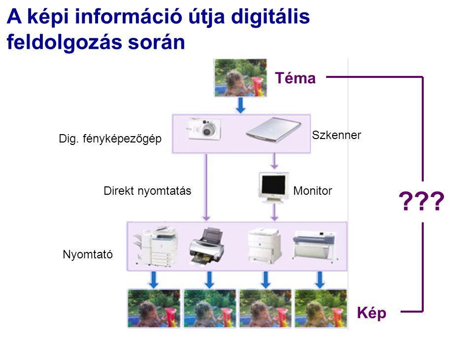 A képi információ útja digitális feldolgozás során Direkt nyomtatásMonitor Nyomtató Téma Kép Szkenner Dig.