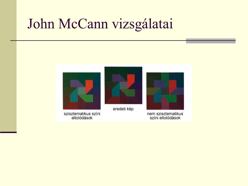 John McCann vizsgálatai