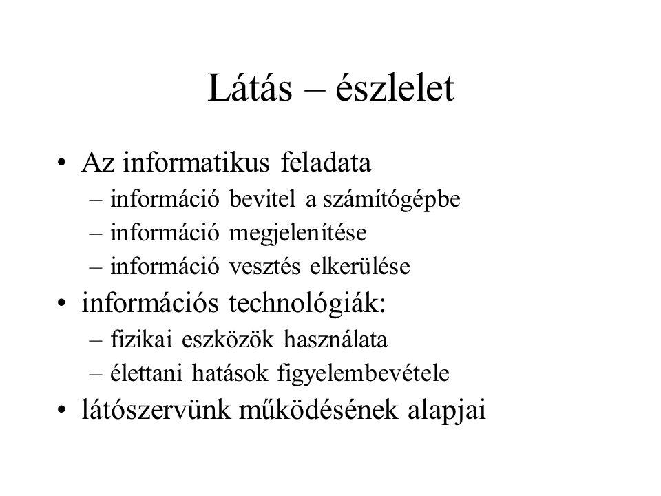 Látás – észlelet Az informatikus feladata –információ bevitel a számítógépbe –információ megjelenítése –információ vesztés elkerülése információs tech