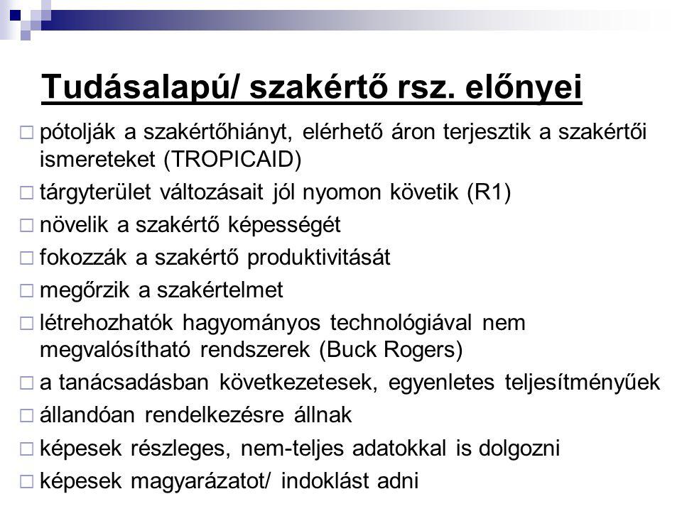 Tudásalapú/ szakértő rsz. előnyei  pótolják a szakértőhiányt, elérhető áron terjesztik a szakértői ismereteket (TROPICAID)  tárgyterület változásait