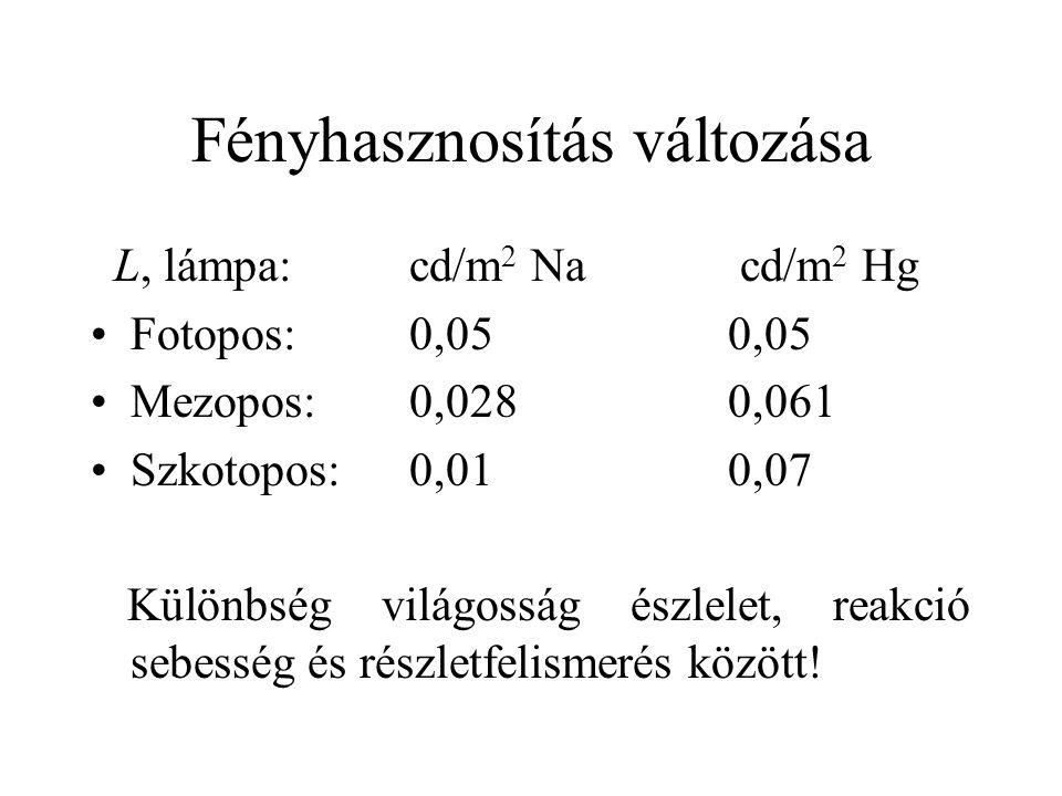 Fényhasznosítás változása L, lámpa: cd/m 2 Na cd/m 2 Hg Fotopos:0,050,05 Mezopos:0,0280,061 Szkotopos:0,010,07 Különbség világosság észlelet, reakció sebesség és részletfelismerés között!