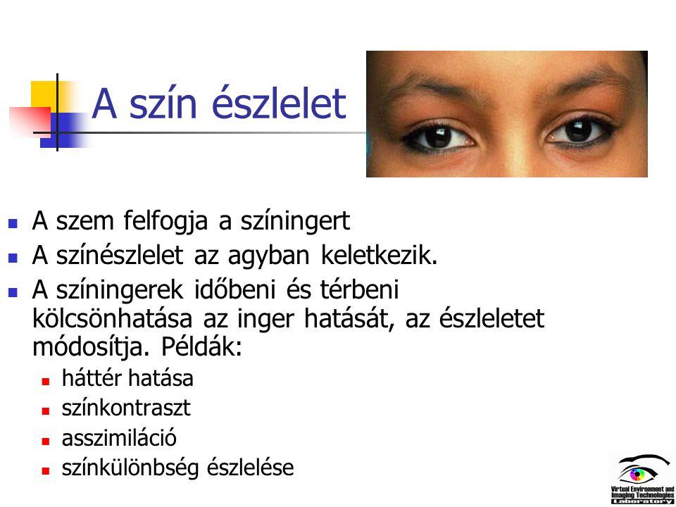A szín észlelet A szem felfogja a színingert A színészlelet az agyban keletkezik.