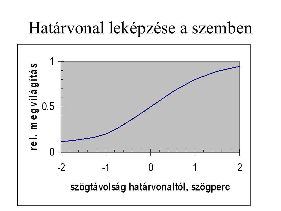 Az L-, M-, S-csapok eloszlása a foveában és annak környezetében