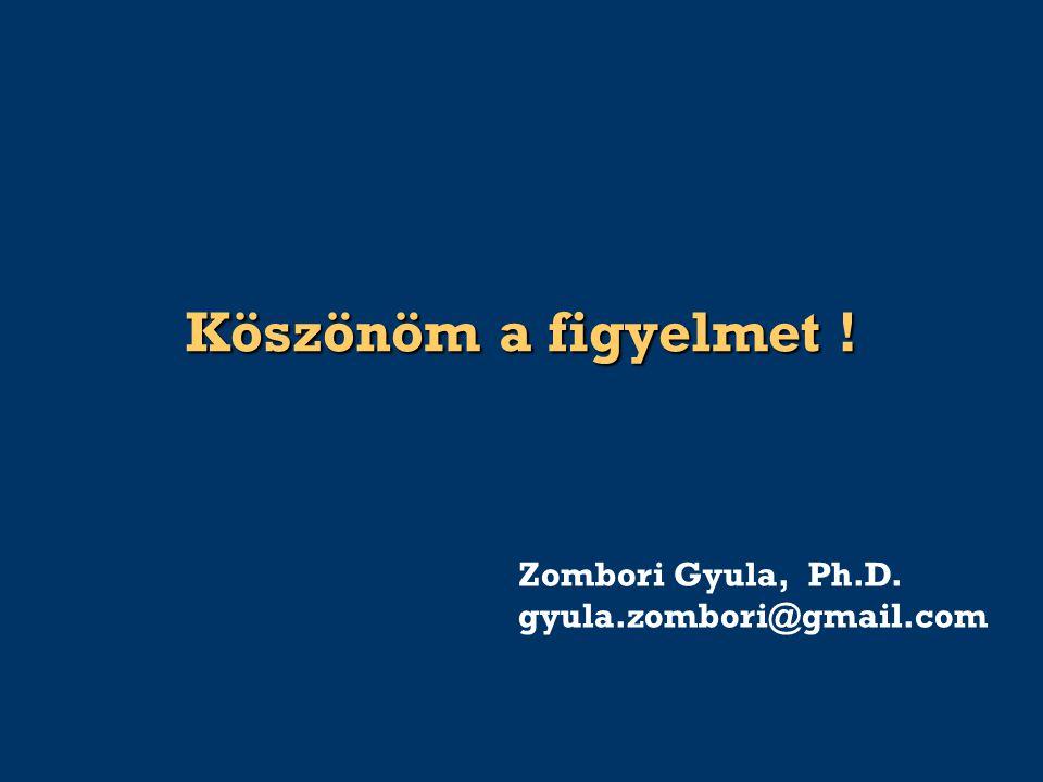 Köszönöm a figyelmet ! Zombori Gyula, Ph.D. gyula.zombori@gmail.com