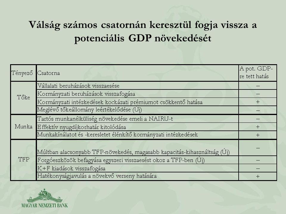 Válság számos csatornán keresztül fogja vissza a potenciális GDP növekedését