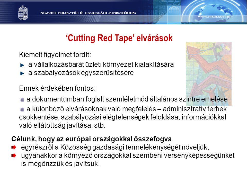 'Cutting Red Tape' elvárások Kiemelt figyelmet fordít: a vállalkozásbarát üzleti környezet kialakítására a szabályozások egyszerűsítésére Ennek érdeké