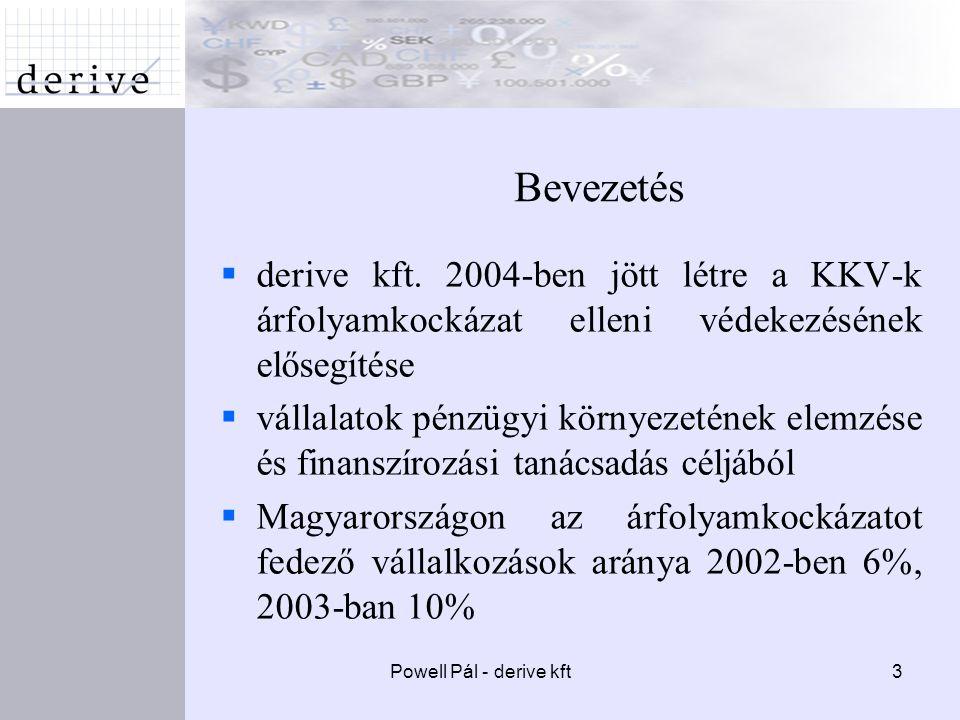 Powell Pál - derive kft3 Bevezetés  derive kft.