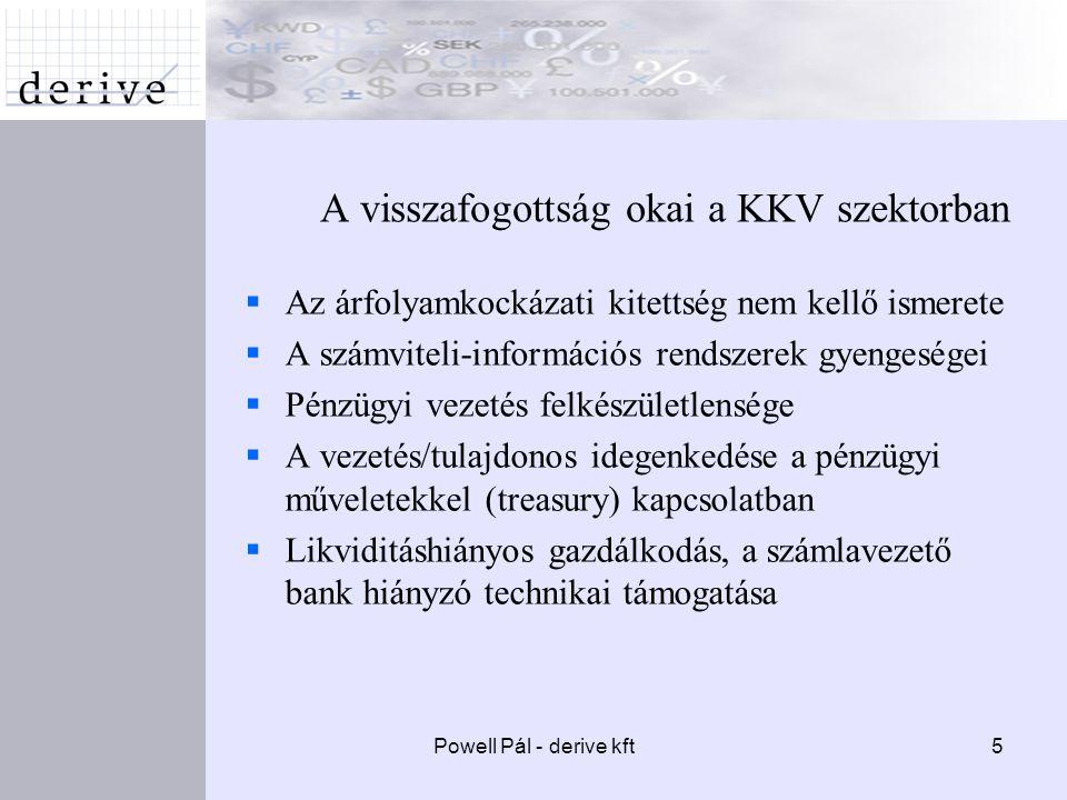 5 A visszafogottság okai a KKV szektorban  Az árfolyamkockázati kitettség nem kellő ismerete  A számviteli-információs rendszerek gyengeségei  Pénzügyi vezetés felkészületlensége  A vezetés/tulajdonos idegenkedése a pénzügyi műveletekkel (treasury) kapcsolatban  Likviditáshiányos gazdálkodás, a számlavezető bank hiányzó technikai támogatása