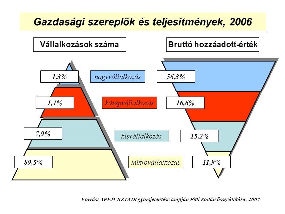 Gazdasági szereplők és teljesítmények, 2006 Vállalkozások számaBruttó hozzáadott-érték 1,3%nagyvállalkozás középvállalkozás kisvállalkozás mikrovállalkozás11,9% 1,4% 7,9% 89,5% 15,2% 16,6% 56,3% Forrás: APEH-SZTADI gyorsjelentése alapján Pitti Zoltán összeállítása, 2007