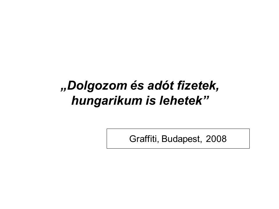 """""""Dolgozom és adót fizetek, hungarikum is lehetek Graffiti, Budapest, 2008"""