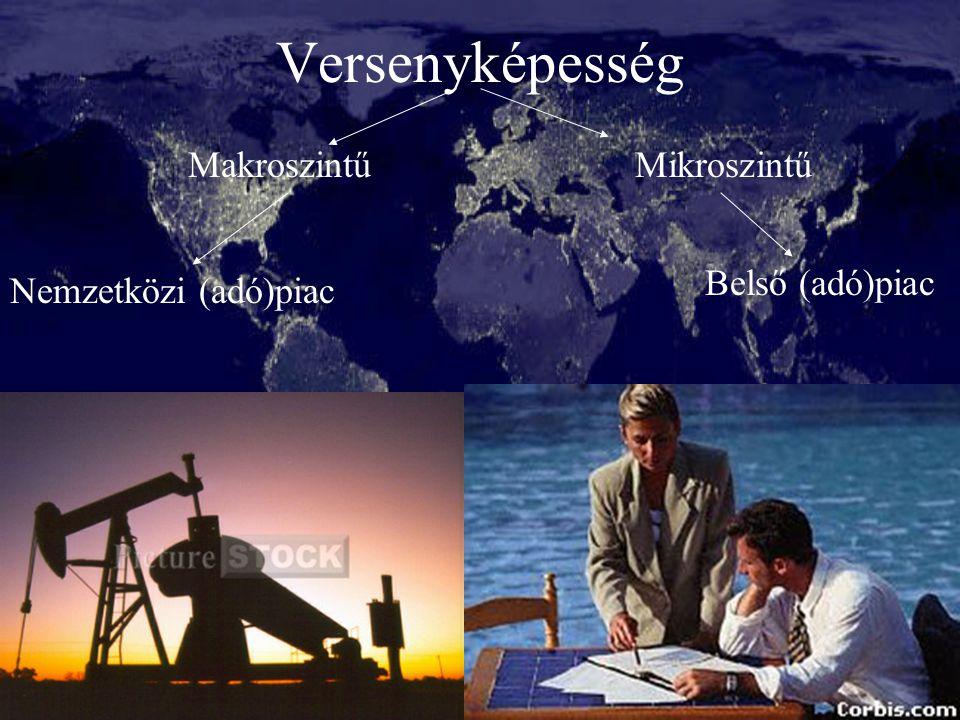 3 Versenyképesség Nemzetközi (adó)piac Belső (adó)piac MakroszintűMikroszintű