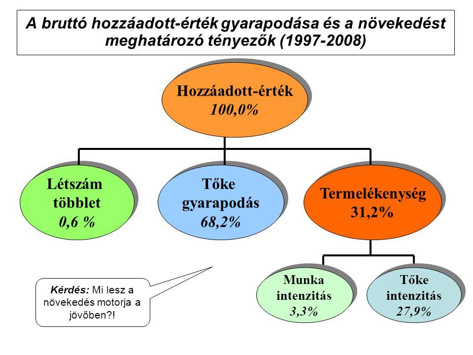 A bruttó hozzáadott-érték gyarapodása és a növekedést meghatározó tényezők (1997-2008) Hozzáadott-érték 100,0% Hozzáadott-érték 100,0% Tőke gyarapodás 68,2% Tőke gyarapodás 68,2% Létszám többlet 0,6 % Létszám többlet 0,6 % Termelékenység 31,2% Termelékenység 31,2% Munka intenzitás 3,3% Munka intenzitás 3,3% Tőke intenzitás 27,9% Tőke intenzitás 27,9% Kérdés: Mi lesz a növekedés motorja a jövőben?!