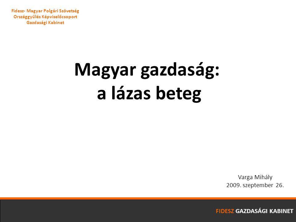 Magyar gazdaság: a lázas beteg Varga Mihály 2009. szeptember 26.