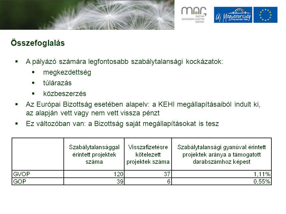 Összefoglalás  A pályázó számára legfontosabb szabálytalansági kockázatok:  megkezdettség  túlárazás  közbeszerzés  Az Európai Bizottság esetében
