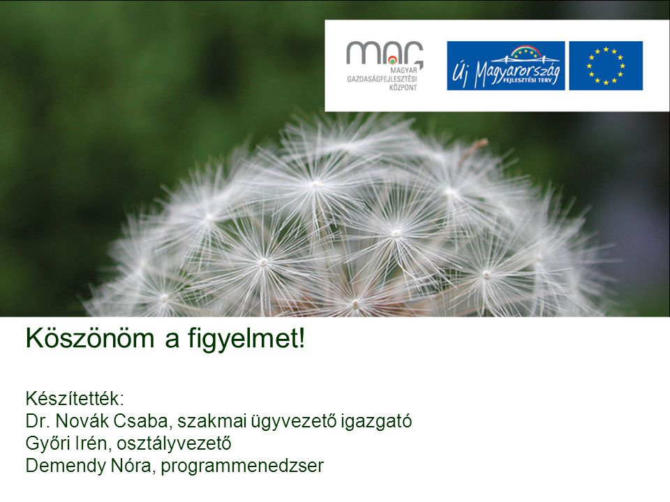 Köszönöm a figyelmet! Készítették: Dr. Novák Csaba, szakmai ügyvezető igazgató Győri Irén, osztályvezető Demendy Nóra, programmenedzser
