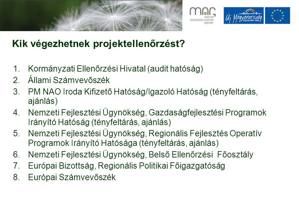 Kik végeztek a MAG Zrt-nél 2009-ben ténylegesen rendszer vagy projektellenőrzést.
