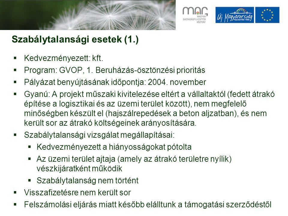 Szabálytalansági esetek (1.)  Kedvezményezett: kft.  Program: GVOP, 1. Beruházás-ösztönzési prioritás  Pályázat benyújtásának időpontja: 2004. nove
