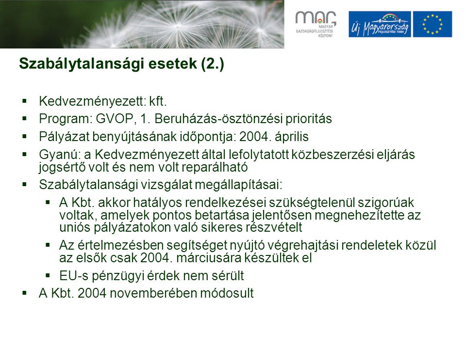 Szabálytalansági esetek (2.)  Kedvezményezett: kft.  Program: GVOP, 1. Beruházás-ösztönzési prioritás  Pályázat benyújtásának időpontja: 2004. ápri