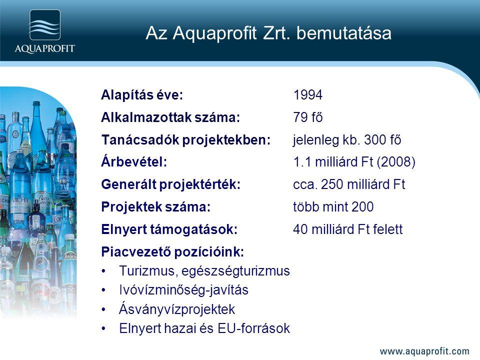 Alapítás éve:1994 Alkalmazottak száma: 79 fő Tanácsadók projektekben:jelenleg kb. 300 fő Árbevétel: 1.1 milliárd Ft (2008) Generált projektérték: cca.
