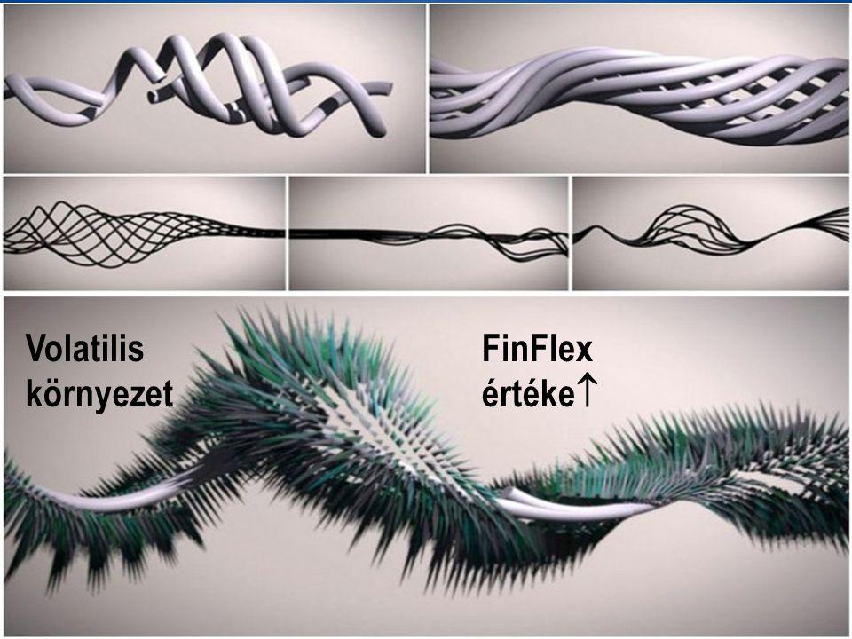 Volatilis környezet FinFlex értéke 
