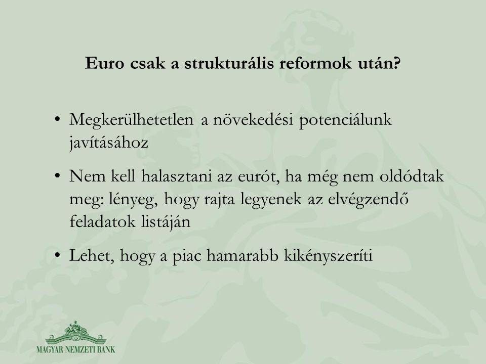 Euro csak a strukturális reformok után.