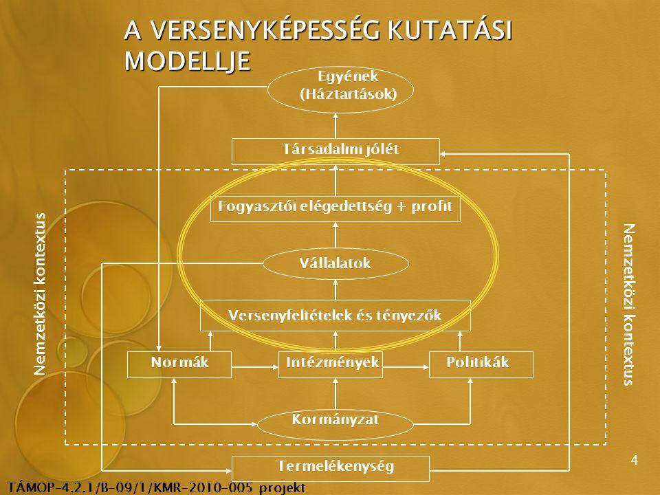 TÁMOP-4.2.1/B-09/1/KMR-2010-005 projekt 5 Versenyfeltételek és tényezők Vállalatok Fogyasztói elégedettség + profit Reálgazdaság