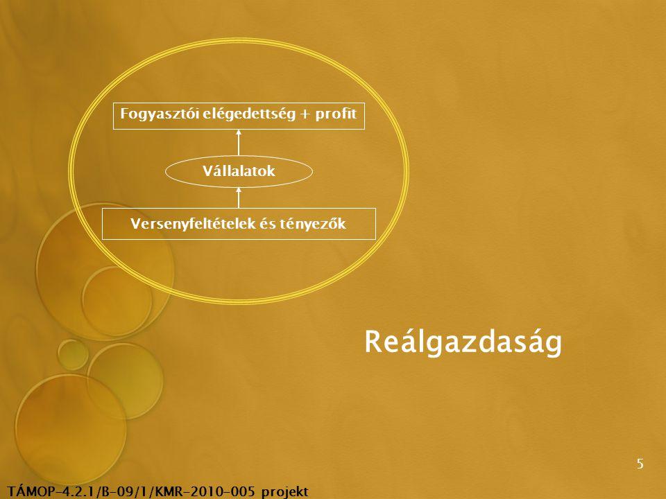 TÁMOP-4.2.1/B-09/1/KMR-2010-005 projekt 16  Az alkalmazások terjedésének pénzügyi és személyi feltételei