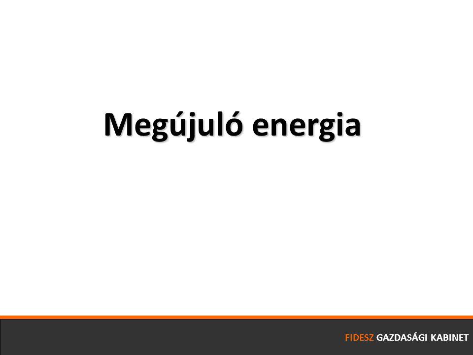 FIDESZ GAZDASÁGI KABINET Megújuló energia