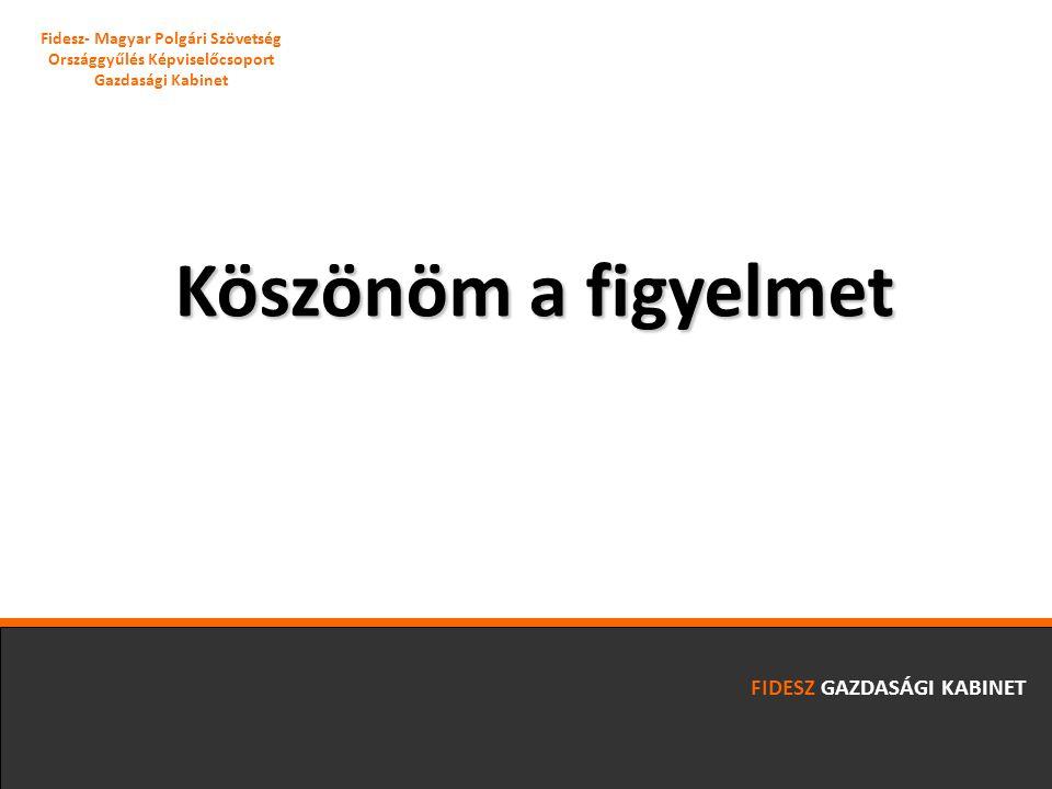 Köszönöm a figyelmet FIDESZ GAZDASÁGI KABINET Fidesz- Magyar Polgári Szövetség Országgyűlés Képviselőcsoport Gazdasági Kabinet