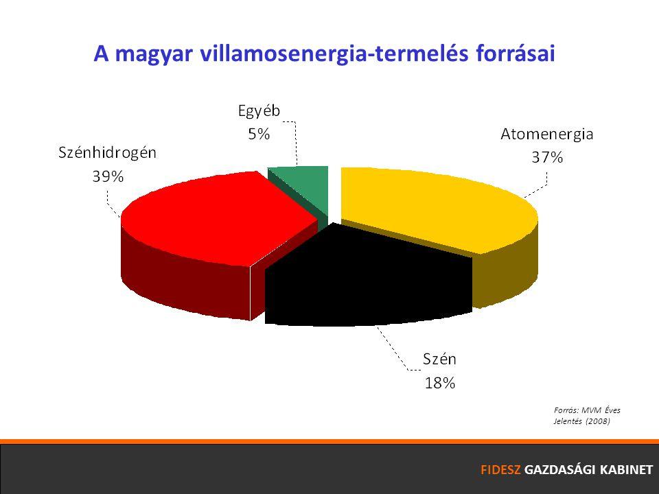 FIDESZ GAZDASÁGI KABINET Forrás: MVM Éves Jelentés (2008) A magyar villamosenergia-termelés forrásai