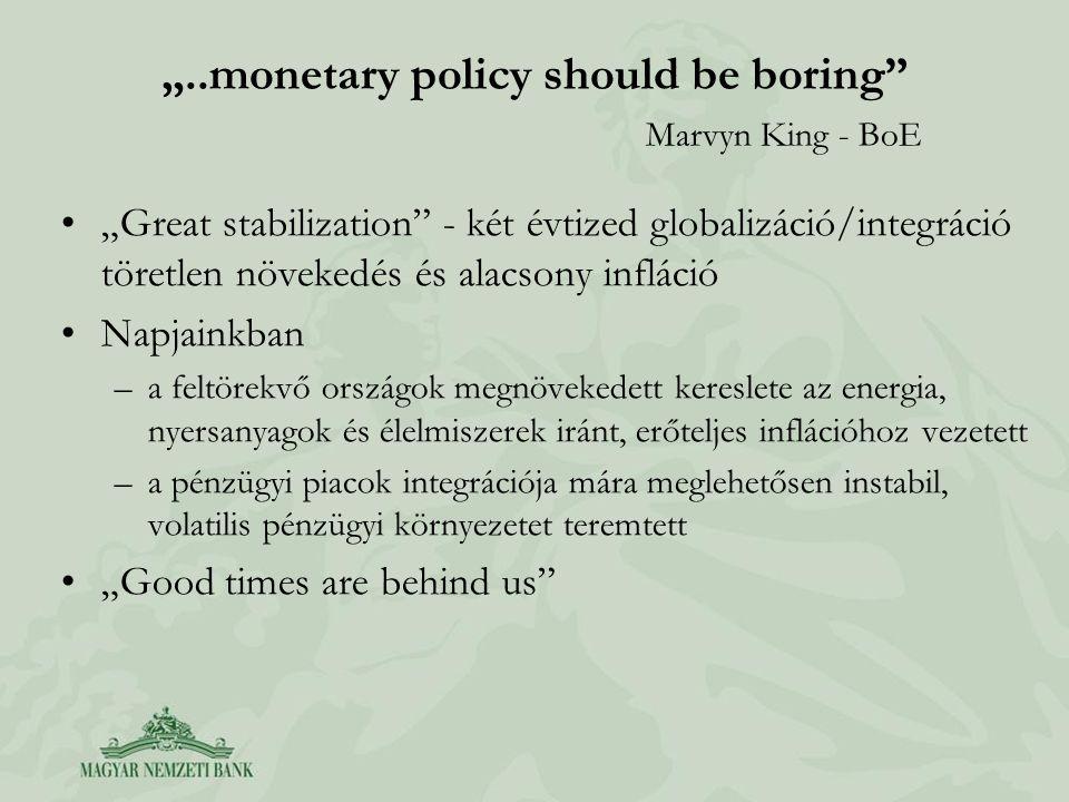 A hazai kérdések A monetáris politika körül zajló vita aspektusai: –globális nyersanyagárak hatásai, –a nemzetközi pénzügyi válság következményei, –megtorpanó hazai dezinflációs folyamat, –az inflációs célkövetés rendszere, –az árfolyam szerepéről a monetáris politika vitelében.