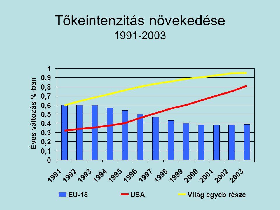 Tőkeintenzitás növekedése 1991-2003 0 0,1 0,2 0,3 0,4 0,5 0,6 0,7 0,8 0,9 1 1991199219931994199519961997199819992000200120022003 Éves változás %-ban EU-15USAVilág egyéb része