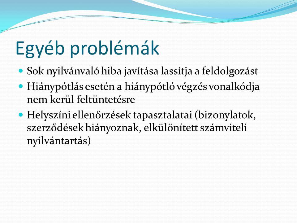 Egyéb problémák Sok nyilvánvaló hiba javítása lassítja a feldolgozást Hiánypótlás esetén a hiánypótló végzés vonalkódja nem kerül feltüntetésre Helysz