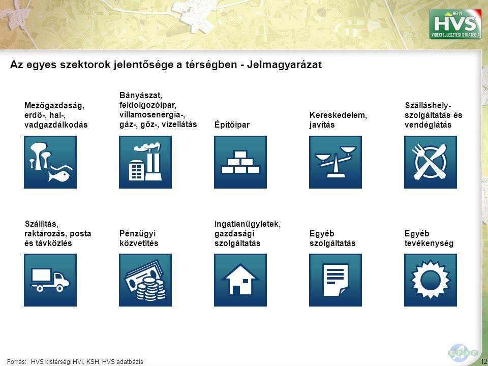 12 Forrás:HVS kistérségi HVI, KSH, HVS adatbázis Az egyes szektorok jelentősége a térségben - Jelmagyarázat Mezőgazdaság, erdő-, hal-, vadgazdálkodás Bányászat, feldolgozóipar, villamosenergia-, gáz-, gőz-, vízellátás Építőipar Kereskedelem, javítás Szálláshely- szolgáltatás és vendéglátás Szállítás, raktározás, posta és távközlés Pénzügyi közvetítés Ingatlanügyletek, gazdasági szolgáltatás Egyéb szolgáltatás Egyéb tevékenység
